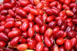 Кизил (ягоды кизила) в напитках: компот из кизила